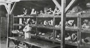 Dora Buchenwald